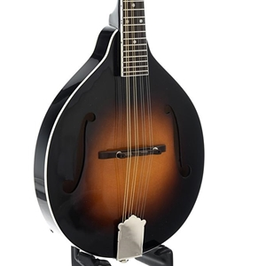 Rover Rm50 Mandolin (Solid Spruce Top)