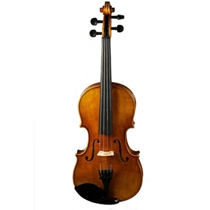 Scott Cao 4/4 Violin Outfit W/dominant Strings & Wittner Tailpiece