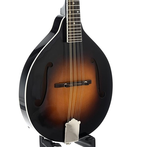 Rover RM50 Mandolin (Solid Spruce Top, Solid Maple Back and Sides)
